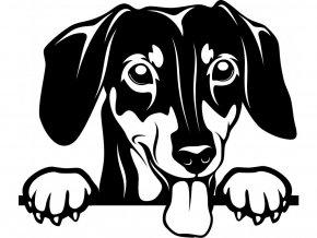 Samolepka pes Jezevčík s vyplazeným jazykem