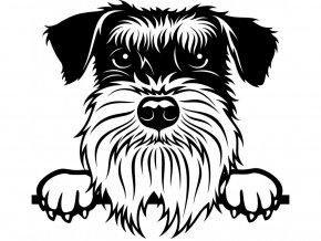 Samolepka pes - Knírač