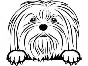 Samolepka pes - Maltézský psík