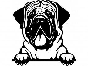 Samolepka pes Mastif vyplazený jazyk