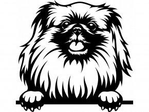Samolepka pes - Pekingský palácový psík