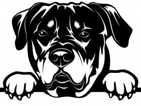 Samolepka pes Rotvajler