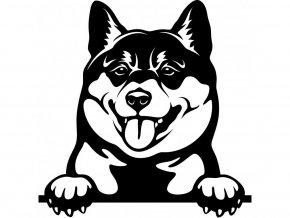 Samolepka pes - Shiba inu