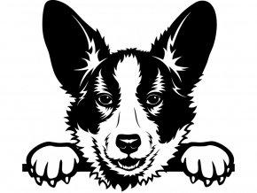 Samolepka pes Welsh corgi corgian