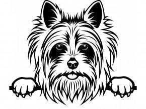 Samolepka pes Yorkshire teriér