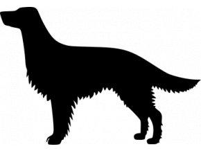 Samolepka pes - Anglický setr