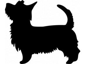 Samolepka pes - Silský teriér