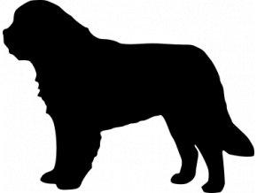 Samolepka pes - Bernardýn