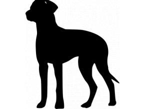 Samolepka pes - Maďarský ohař