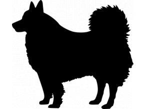 Samolepka pes - Špic