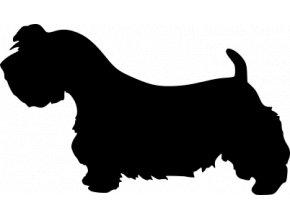 Samolepka pes - Český teriér