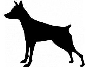 Samolepka pes - Pražský krysařík
