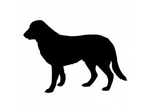 Samolepka pes - Tuvan Shepherd