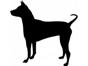 Samolepka pes - Thajský ridgback