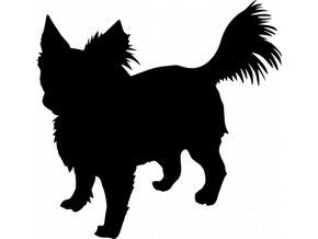 Samolepka pes - Čivava dlouhosrstá