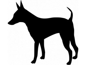 Samolepka pes - Trpasličí pinč
