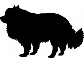 Samolepka pes - Pomerian