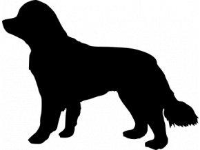 Samolepka pes - Novofundlandský pes