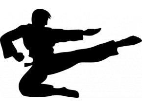 Samolepka - Karate skok