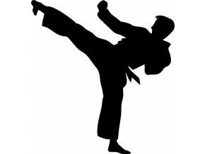 Samolepka - Karate kop