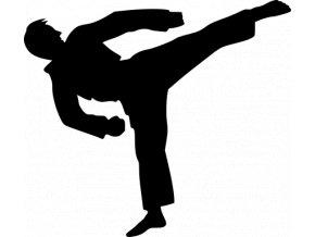 Samolepka - Karate trénink