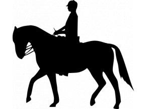 Samolepka - Žena na koni