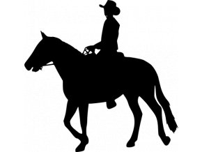 Samolepka - Chlapec na koni