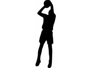 Samolepka na auto - Basketball
