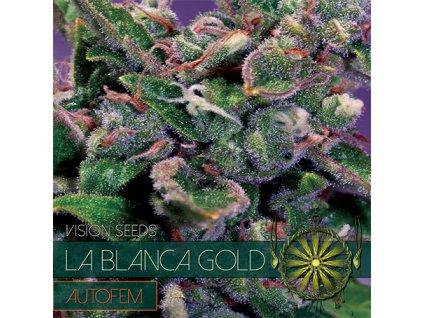 Samonakvétací semeno  LA BLANCA GOLD