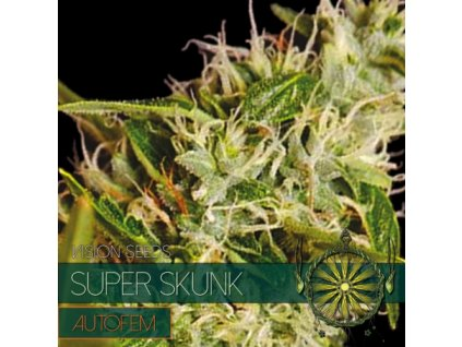 Samonakvétací semeno  SUPER SKUNK