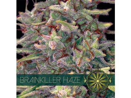 Feminizované semeno BRAINKILLER HAZE