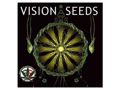 CBD Feminizované semeno MEDICAL 49 (CBD+) - 3 semena