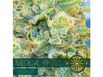 CBD Feminizované semeno MEDICAL 49