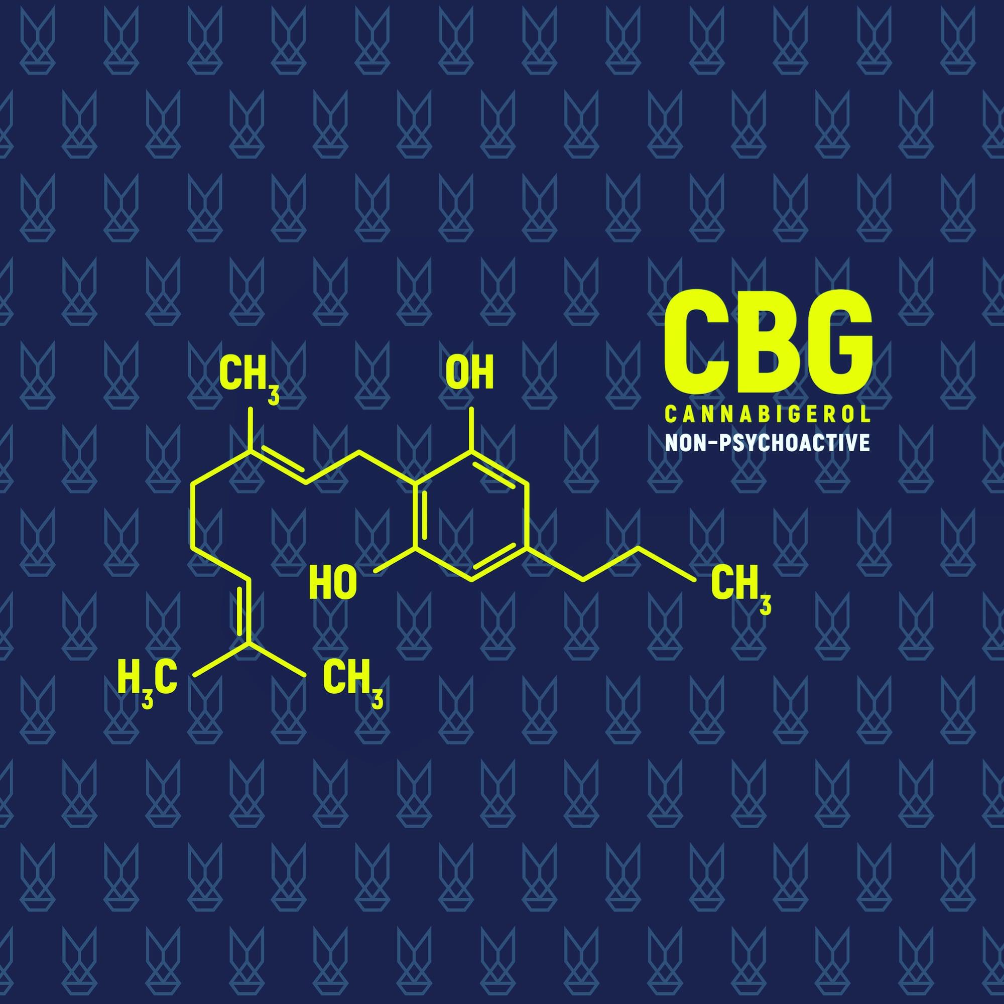 Co je CBG (Cannabigerol)?