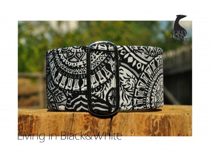 Living in Black&White