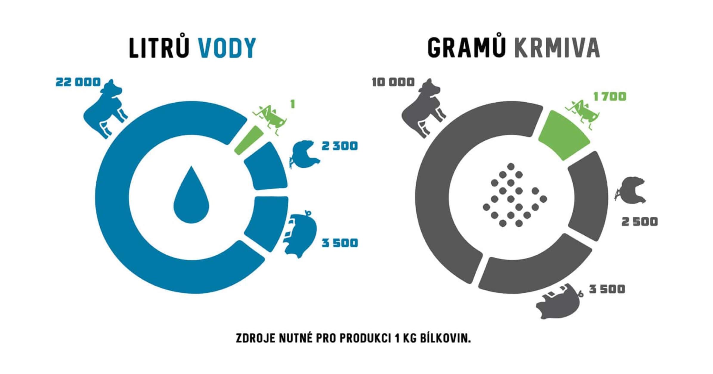 Infografika 2