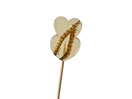Lízátko se sušenými potemníky Jedlý hmyz Netradiční dárky Grig