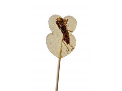Lízátko s kobylkami Netradiční dárky Grig Jedlý hmyz