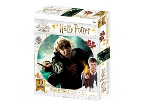 harry potter 3d puzzle ron