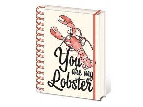 friends pratele poznamkovy blok you are my lobster