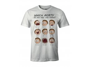 rick and morty panske tricko which morty