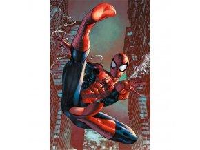 plakat spider man web sling 5f3cc1bee10fc