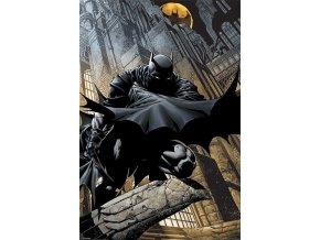 dc comics batman plakat night watch nocni hlidka