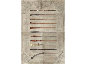 poster harry potter plakat hulky The Wand chooses the Wizard