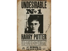 poster harry potter plakat Undesirable N° 1