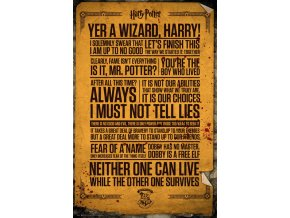 poster harry potter plakat Quotes citáty