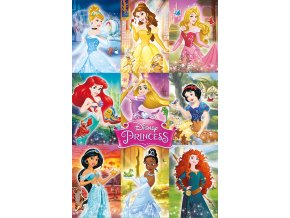 poster plakát disney princess Collage koláž