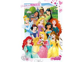 poster plakát disney princess I am a Princess