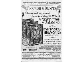 poster plakát FANTASTIC BEASTS 2 Plakát Fantastická zvířata 2 Flourish and Blotts Krucánky a Kaňoury