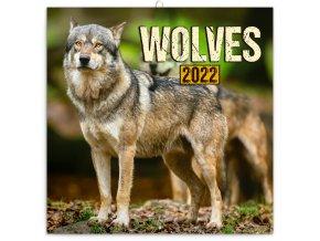 poznamkovy kalendar vlci 2022 30 30 cm 745155 31